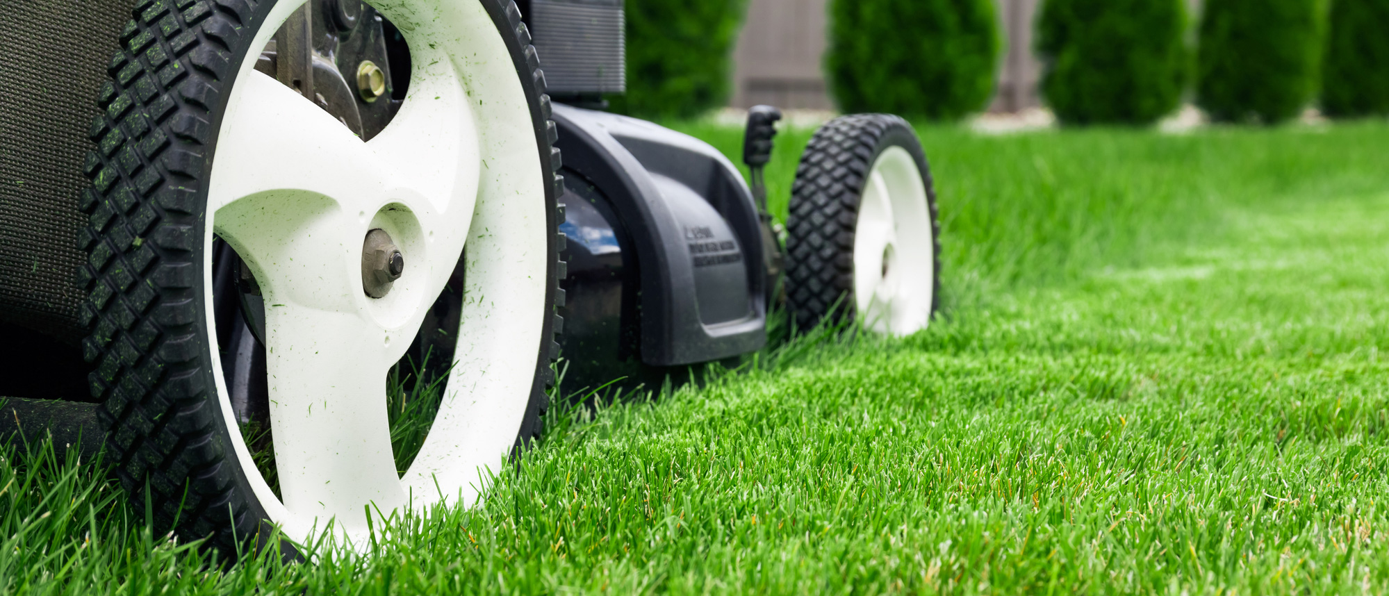 A lawnmower performing gardening and lawn care services.